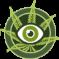 CannabisEye.com
